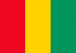 guinea Visa