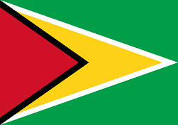 Guyana Visa